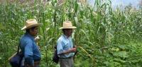 Un Sistema Agrícola Milenario