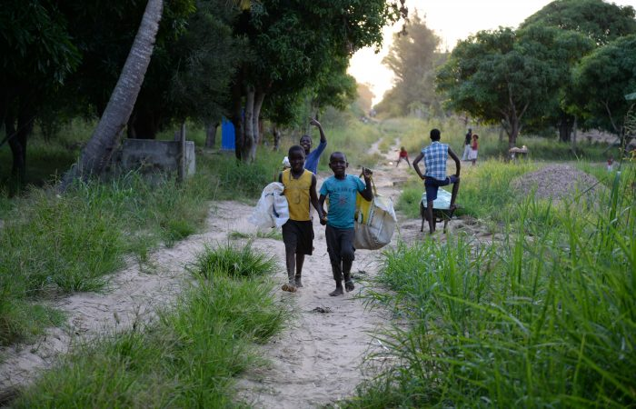 Usurpação de terras em Moçambique