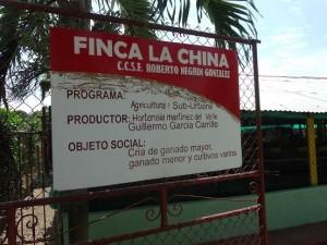 Slow Meat in Cuba