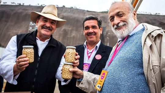 From Peru, the New Slow Food Presidium for an Old Variety of Lupin Beans from Huaylas