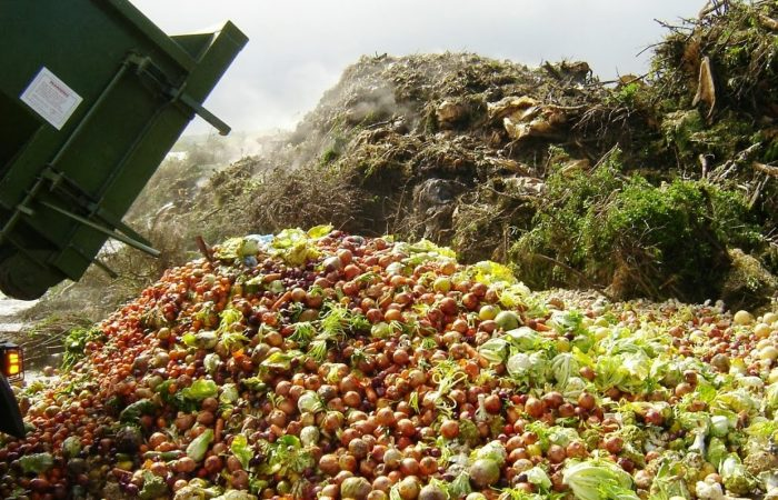 Food Waste Forum