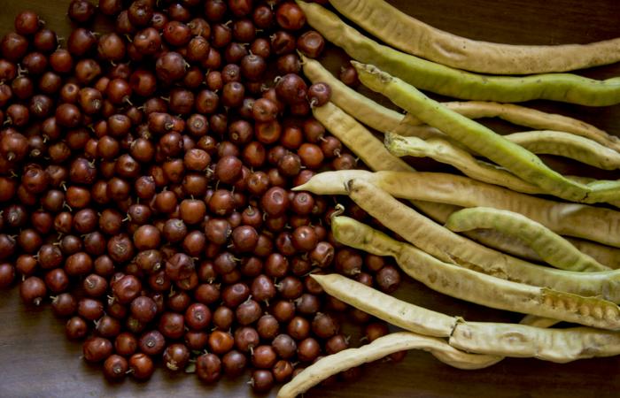 Une recette à base de farine des peuples autochtones d'Argentine
