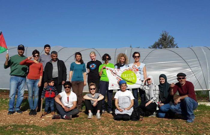 In pictures: Social Farming Day in Bil'in, Palestine