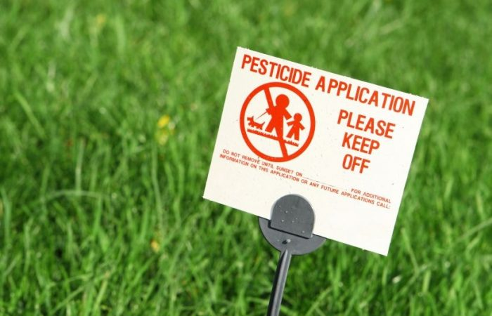 Glyphosate Malaise: Are Ridiculously Cheap Foods and Clean, Tidy Fields Really Worth the Cost?