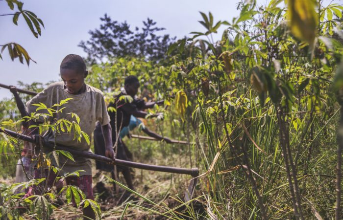 Mobile technology is changing the lives of farmers in Uganda