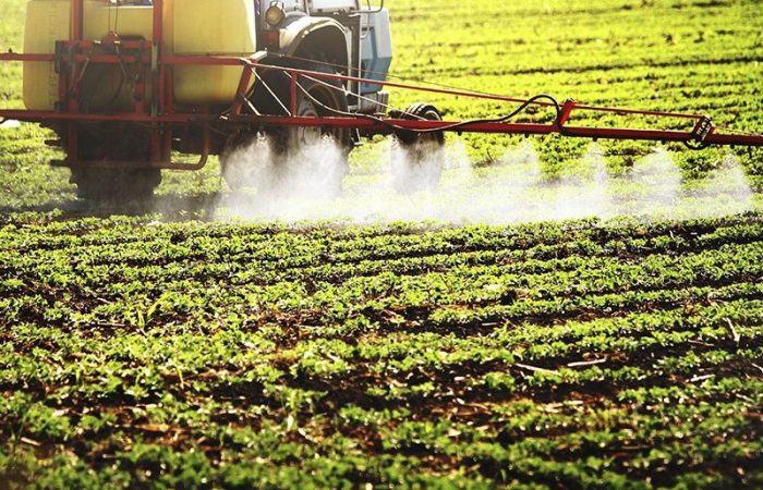 Glyphosate: What Are The Alternatives?