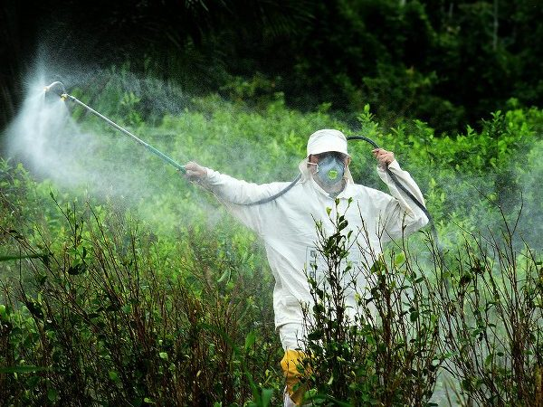 Stop Glyphosate: say no to the herbicide for our health's sake!