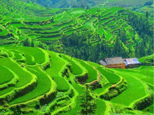 China: a great context for discussing the challenges the future holds for Slow Food