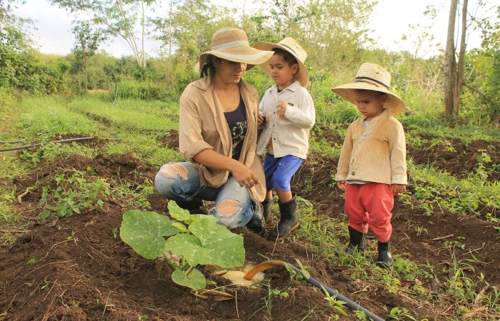 Cuba: Agroecology and Socio-Ecological Resilience