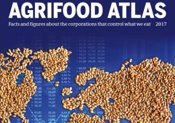 The Situation is Critical: Reflections on the Agrifood Atlas