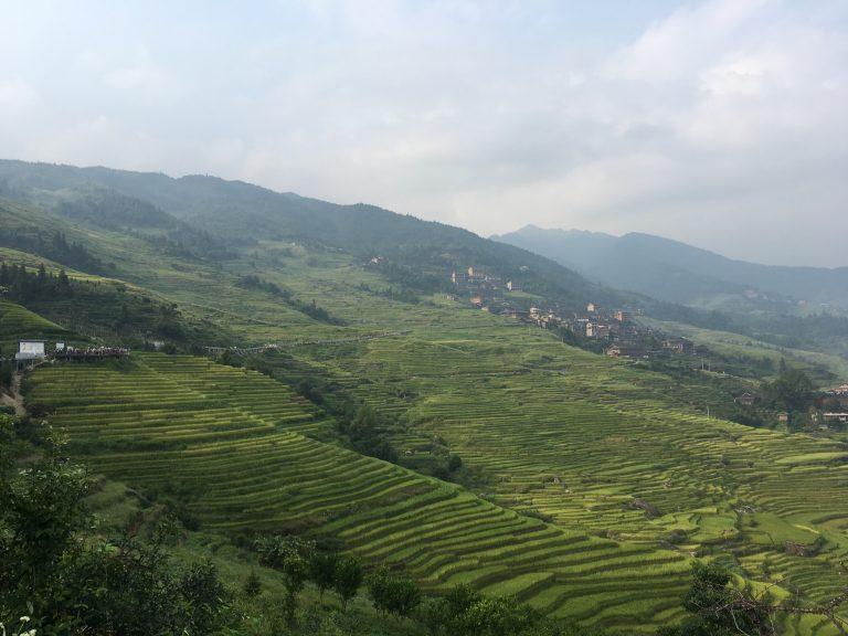 Rizières Longji en Chine