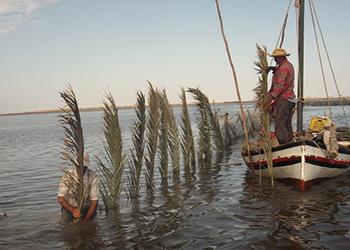 Naissance de la Sentinelle des méthodes de pêche traditionnelles des îles Kerkennah