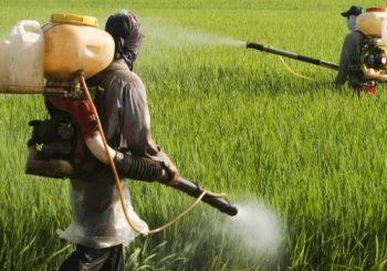 Glyphosate—activism pays off. EU sets up enquiry commission
