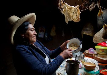 Slow Food and IFAD take the lead: Indigenous crops bring climate solutions in Brazil's Caatinga