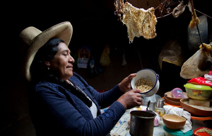 Slow Food and IFAD take the lead: Indigenous crops bring climate solutions for farmers in Brazil's Caatinga