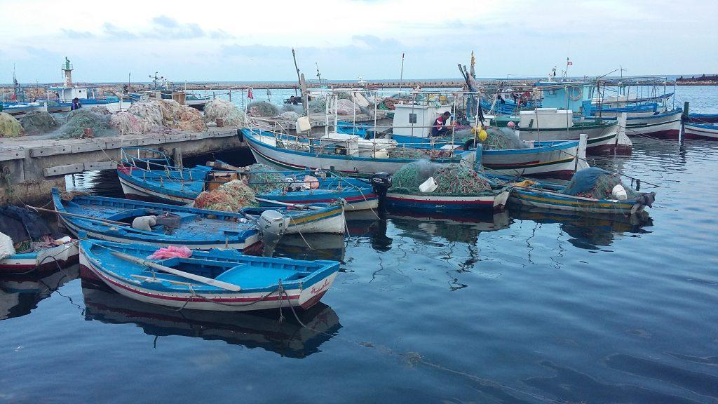 tunisia-slow-fish-sustainable-fishing-boats-marina-dock