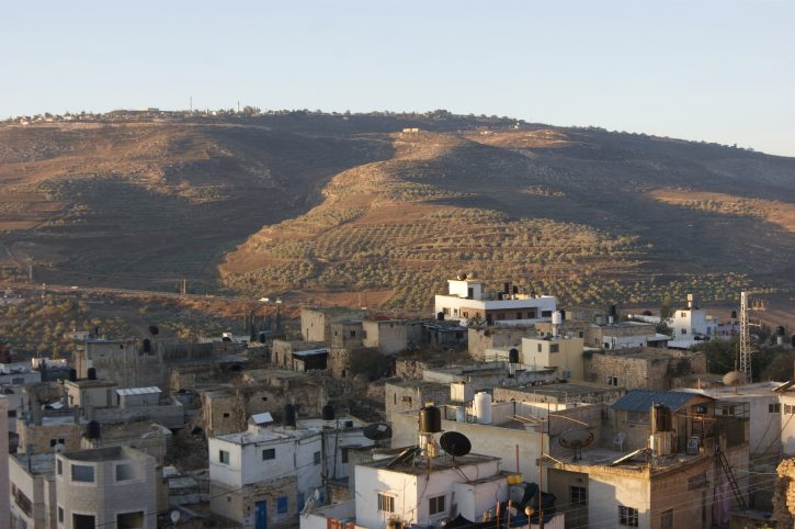 palestine-zoumia-hills-slow-food-terra-madre-network