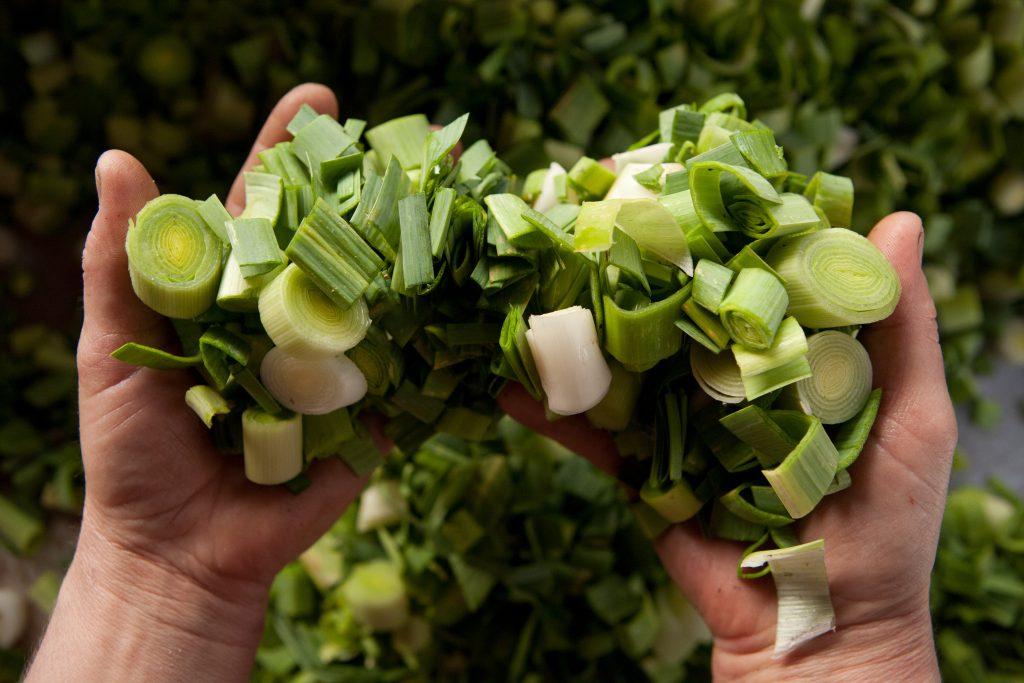 terra-madre-balkans-brussels-slow-food-community-small-onion-leek-chopped
