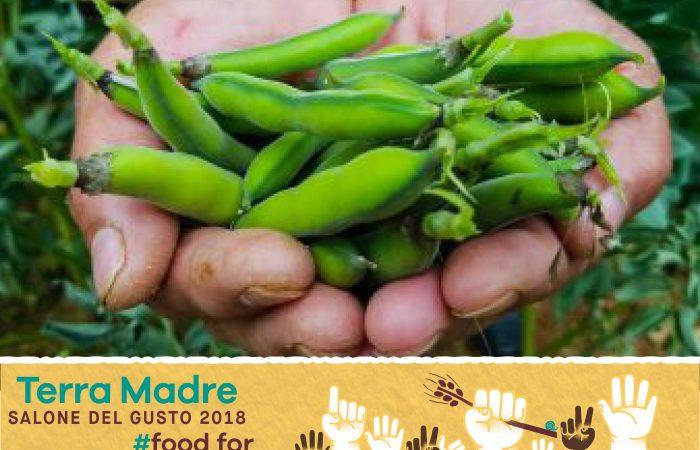 Terra Madre Salone del Gusto, guide des ateliers du goût: Slow Fish, graines et végétariens!