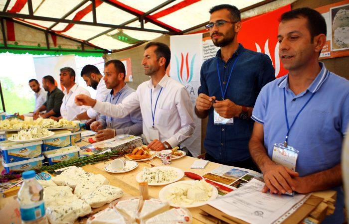 Turkey's Many Cheeses on Display