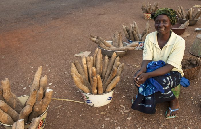 Thank a Farmer – How a Tuber is Helping a Burkinabè Community Fight Climate Change