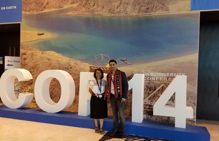 Indigenous Peoples Paving the way: UN COP 14 in Egypt