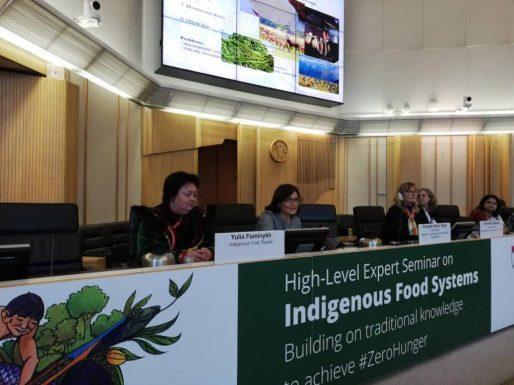 Коренные народы Терра Мадре на экспертном семинаре ФАО