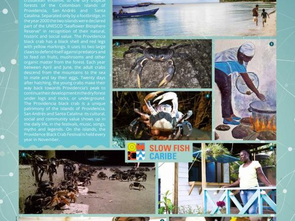 Slow Fish Caribe advocates for sustainable fishing, agriculture and community tourism in San Andrés Providencia and Santa Catalina