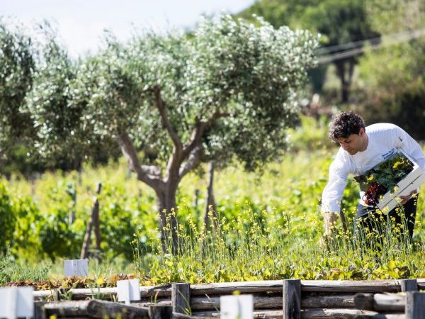 Relais & Châteaux and Slow Food together also this year for Food for Change