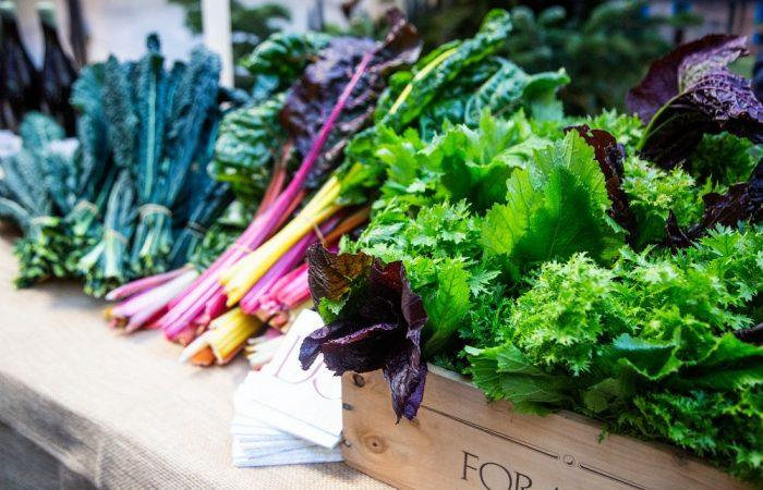 Comunidades Hortícolas: Agroecología y Horticultura dentro de la Red Global Slow Food
