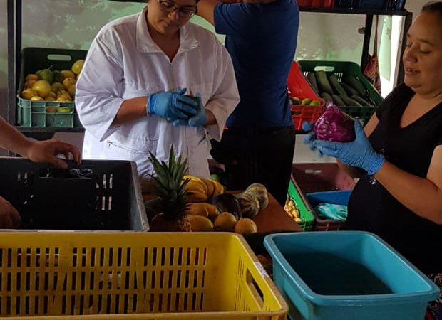 The Slow Food Network in Colombia Mobilizes Different Efforts to Face the Crisis Generated by the Covid-19 pandemic
