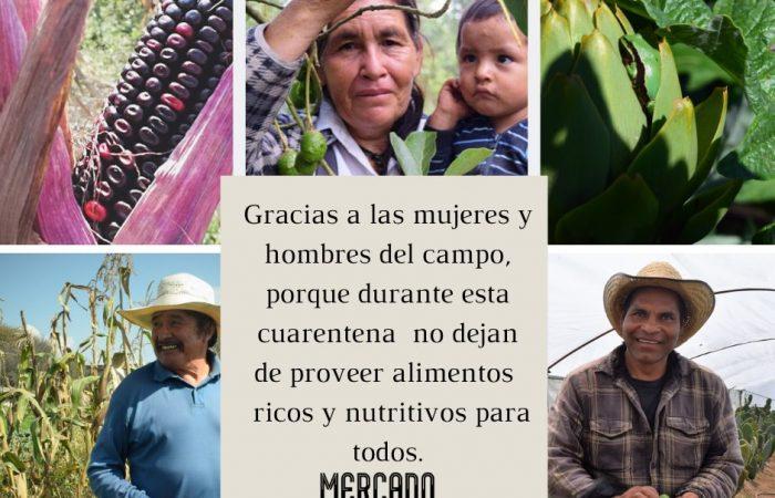 La red Latino Americana florece con iniciativas de apoyo durante esta crisis