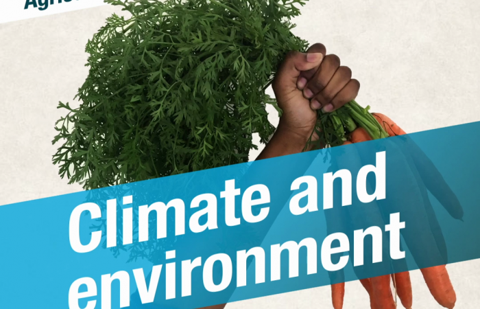 Civil Society Asks for the CAP that Protects Climate and Environment