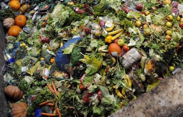 FAO International Day of Awareness of Food Loss and Waste: a warning to awaken our consciences