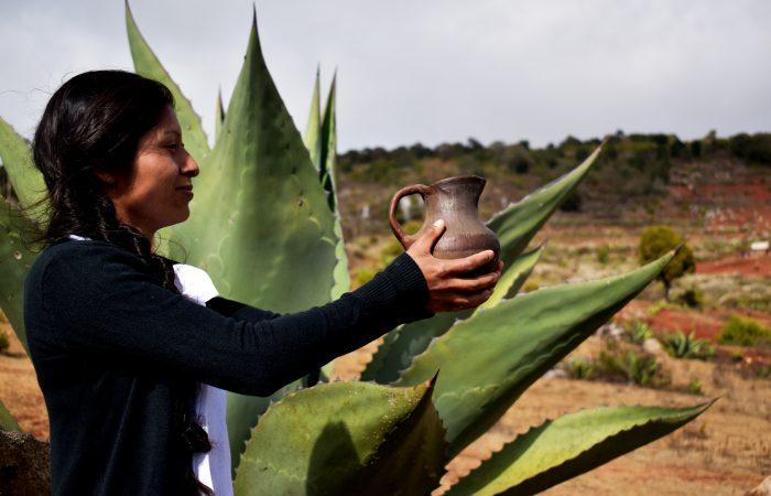 Ein partizipatives Garantiesystem für die  indigenen Presidi von Slow Food