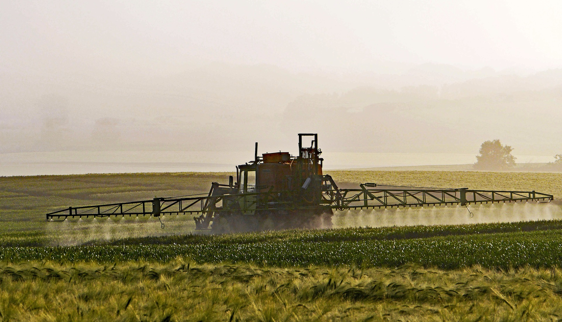 Civil Society Calls on the EU to Prohibit Exports of Banned Pesticides -  Slow Food International