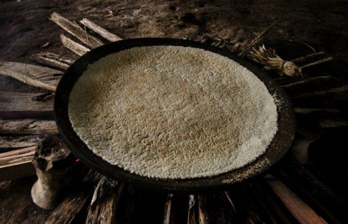 From Brazil: Kiriri manioc flour Slow Food Presidium