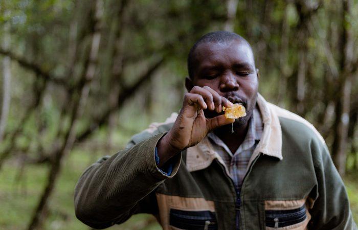 From Kenya: the Ogiek honey Slow Food Presidium