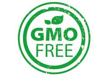 Comment Slow Food protège l'Europe des OGM ?