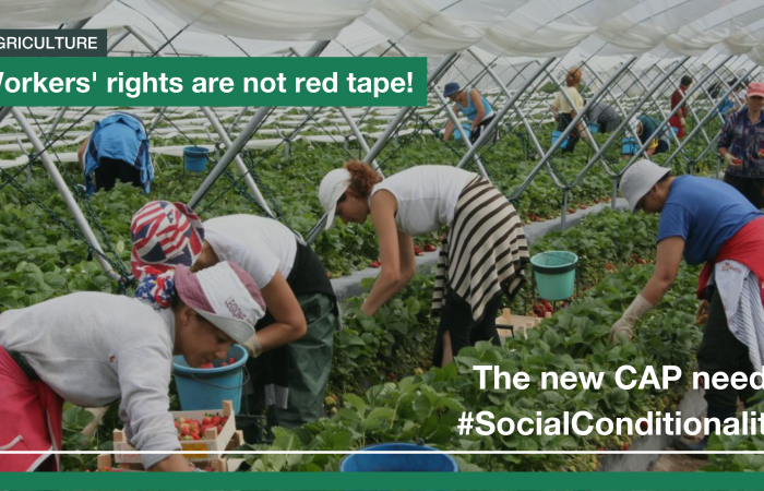 Open Letter: The New CAP Needs Social Conditionality