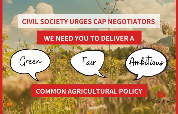 CAP: The Top European Institutions Meet to Decide