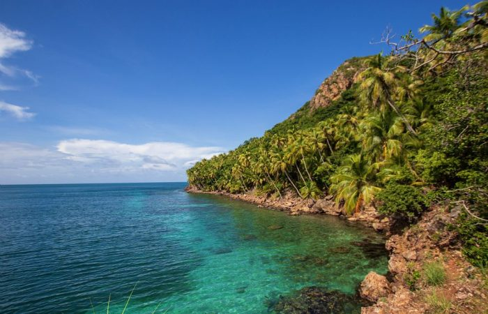 The Great Caribbean: a paradise to look after