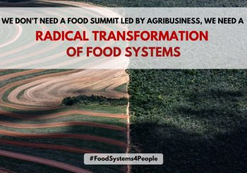 UN Food Systems Summit: We cannot jump onto a train that is heading in the wrong direction.