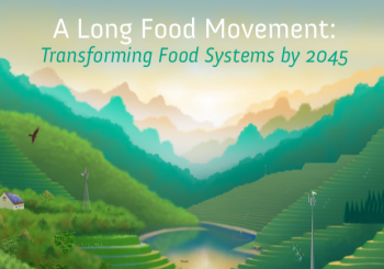 A Long Food Movement: Transforming Food Systems by 2045