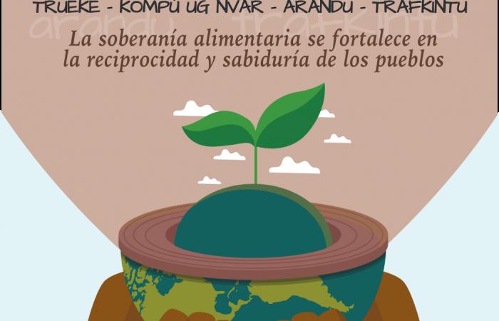 Intercambio de saberes en el Cono Sur genera reflexiones sobre cuestiones fundamentales vinculadas a las semillas
