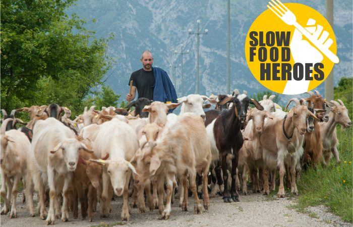 Slow Food Heroes: a 4.0 shepherd helps Covid care units