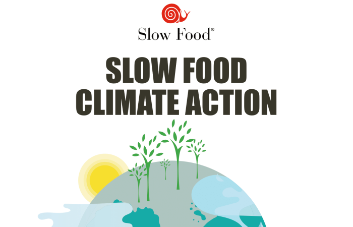 Three Sessions on the Links Between Food and Climate