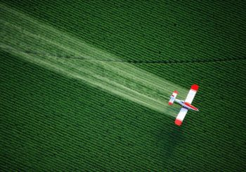 Civil society is Carefully Eyeing EU decision Makers on the Renewal of Glyphosate